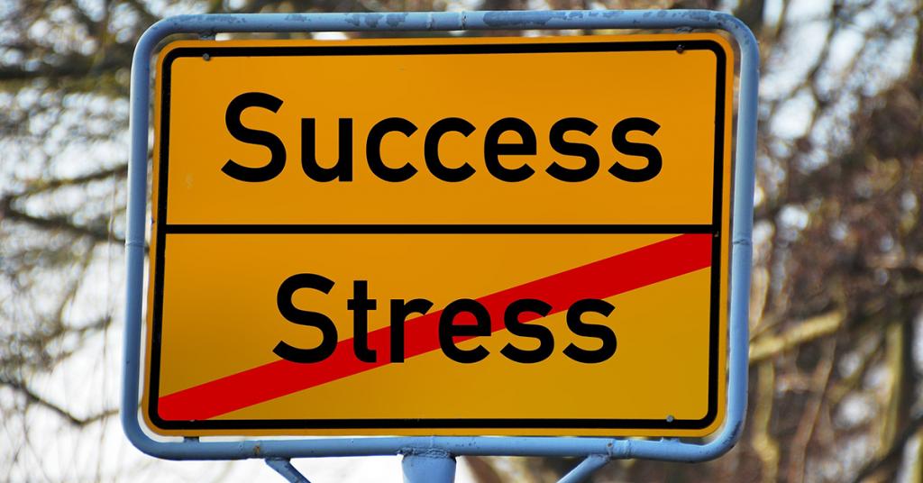 Stress Succes august