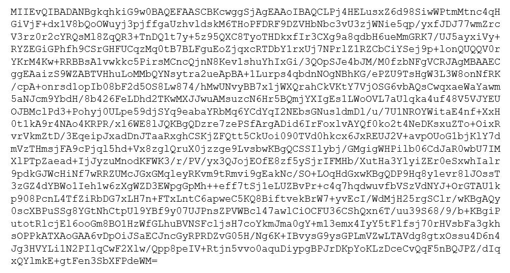 Bild som visar hur en privat nyckel ser ut i PEM format